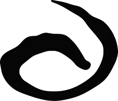 Auieo-logo